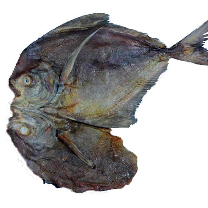 Medium Rupchanda - Black - Regular